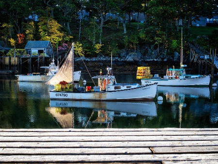Frosty Morning on the Docks
