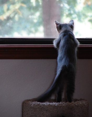 It's A Big World Out There