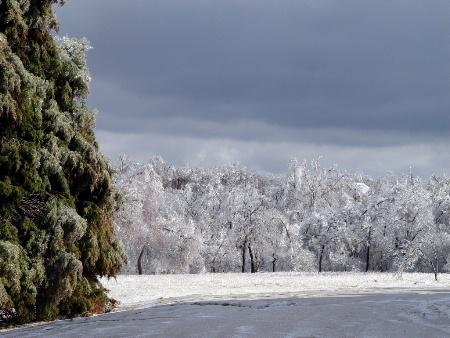 After The Ice Storm (Lake Eufaula, Ok.)