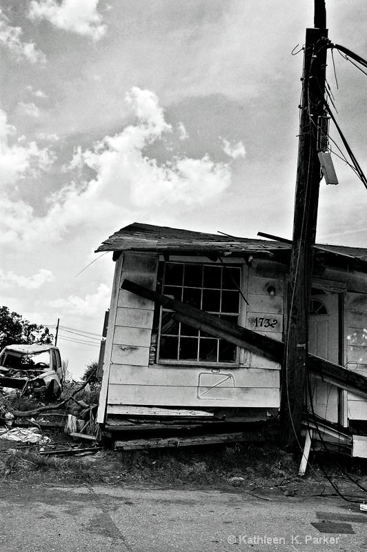 Katrina Frenzy 2, New Orleans