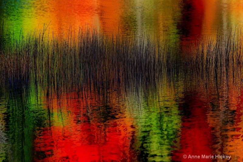 Reeds in Autumn Color