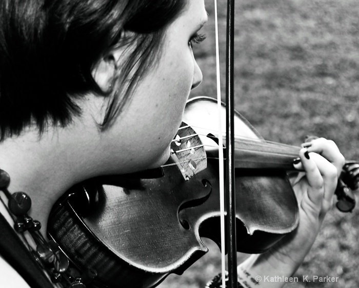 The Wedding Violinist