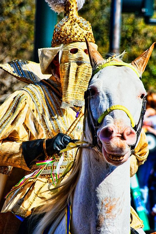 Duke on Horseback: Rex Parade