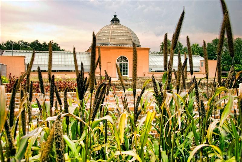 #3060 New Orleans Botanical Garden