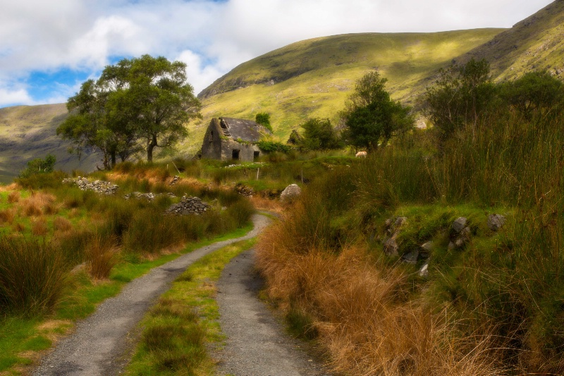 The Old Cottage Along the Road