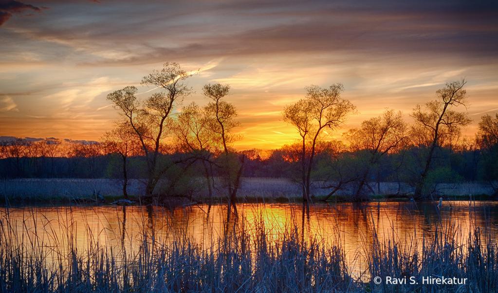 Sunset at Warner Park