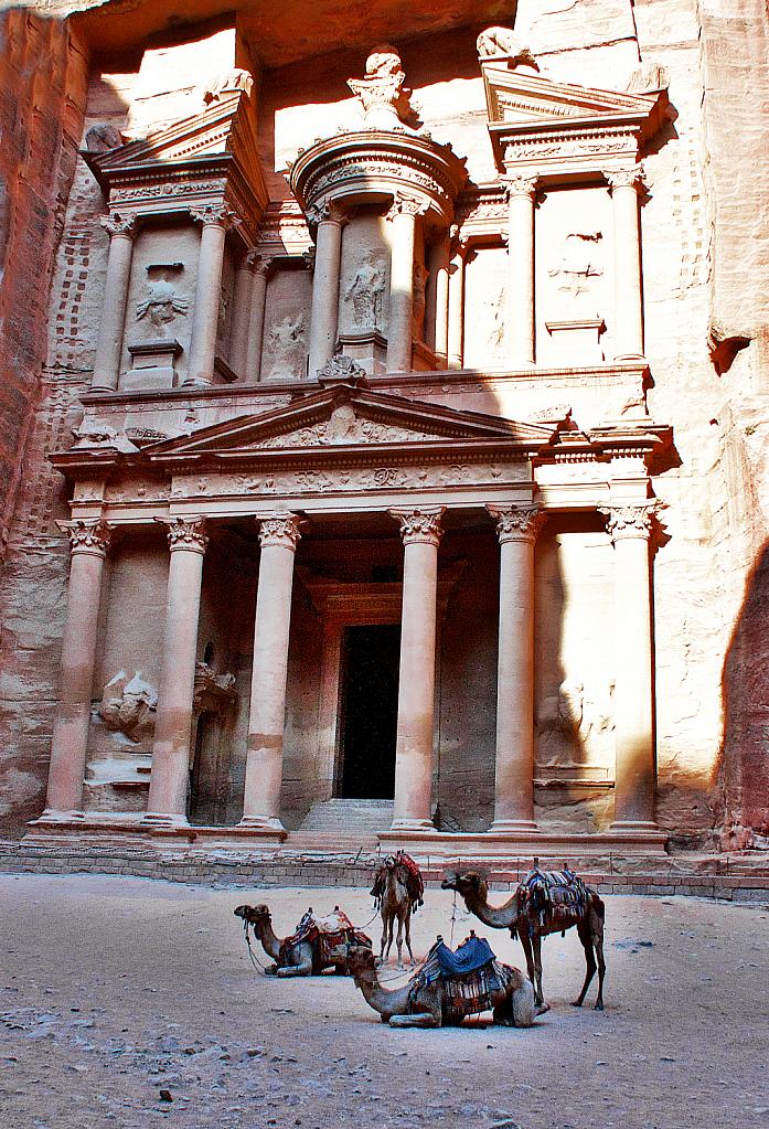 Camels at Majestic Petra