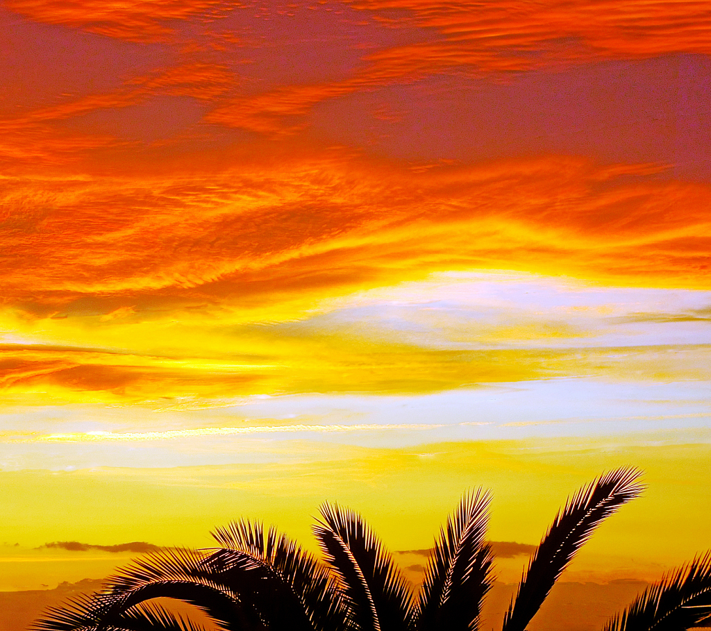 Multicolored afternoon horizon.