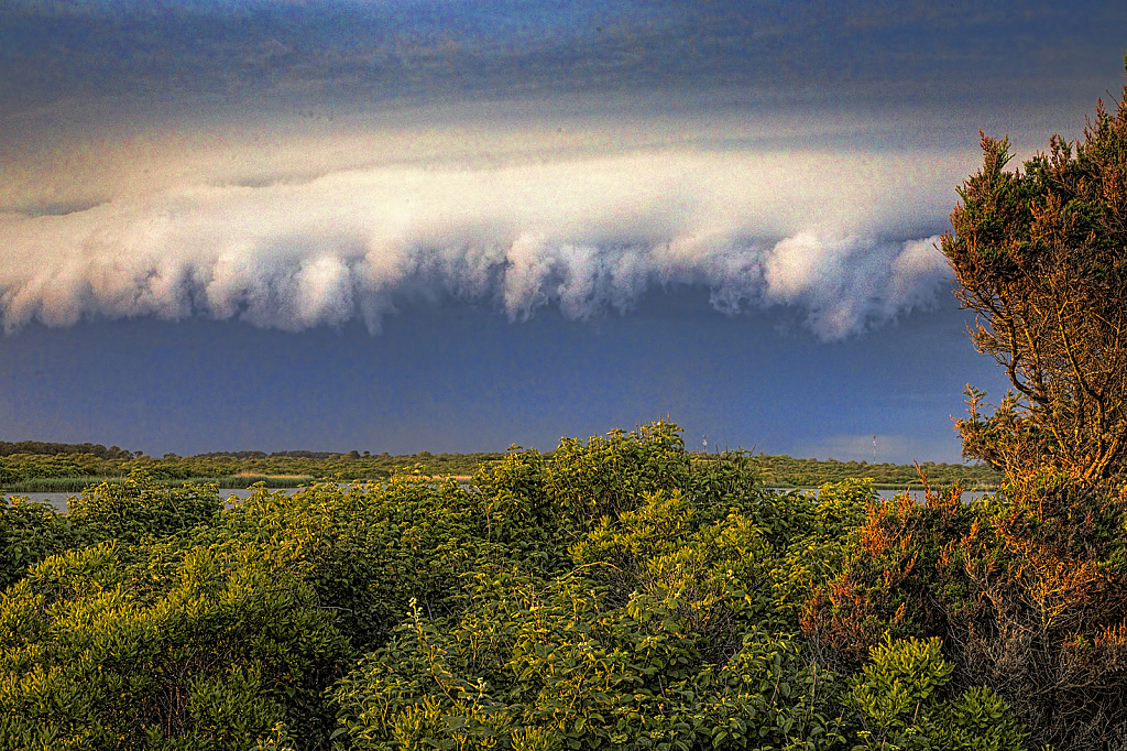 Diary of a Nantucket Storm 1