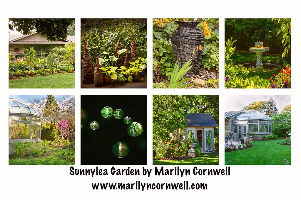 Sunnylea Garden