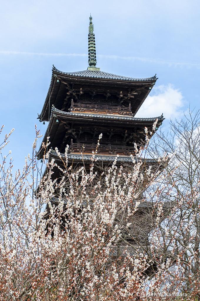 Kokubunji Pagoda 2