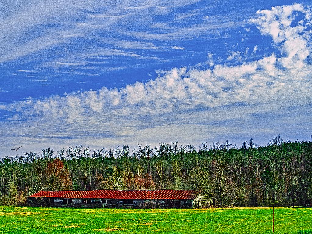 Rural Arkansas