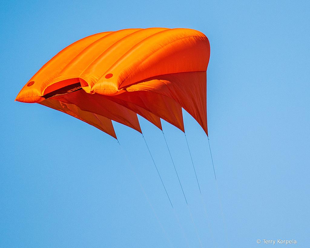 5 Meter Kite