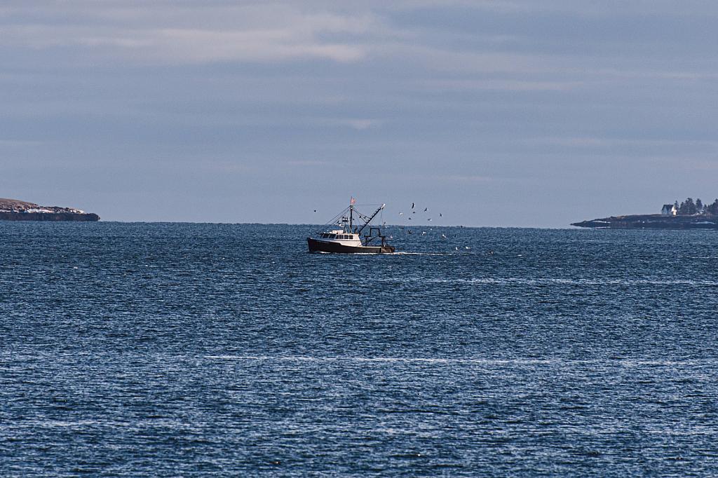 Acadia National Park- Along the Sea Wall!! 1