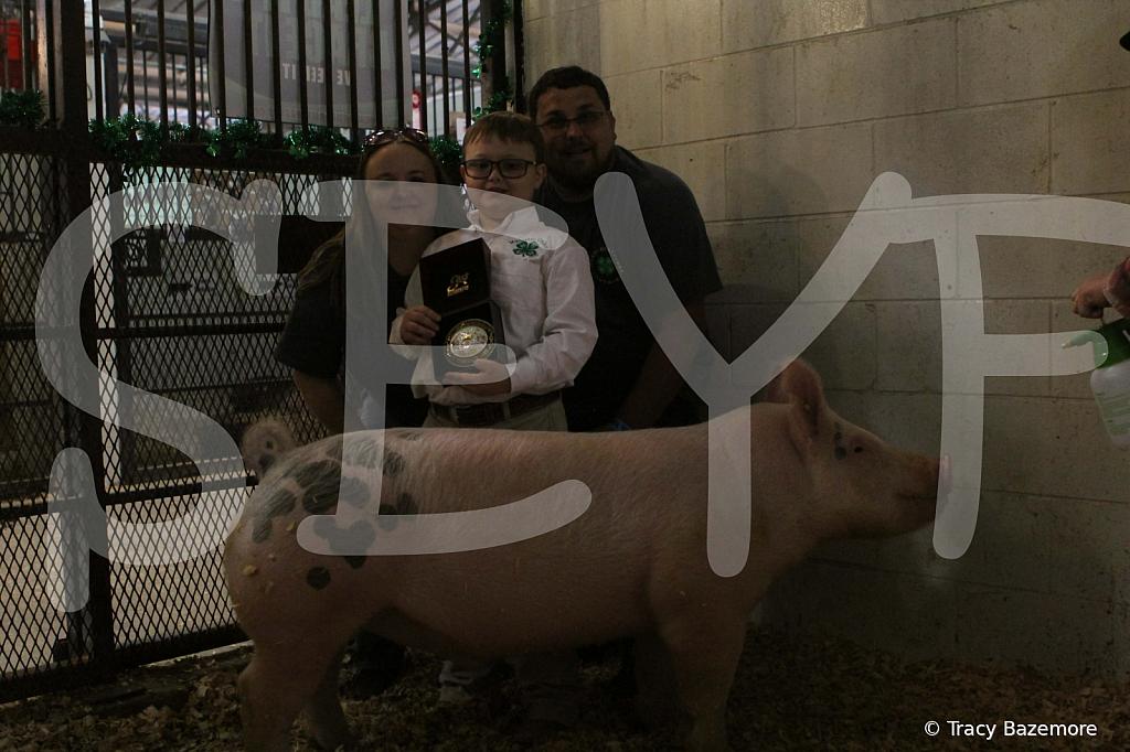 swine4958