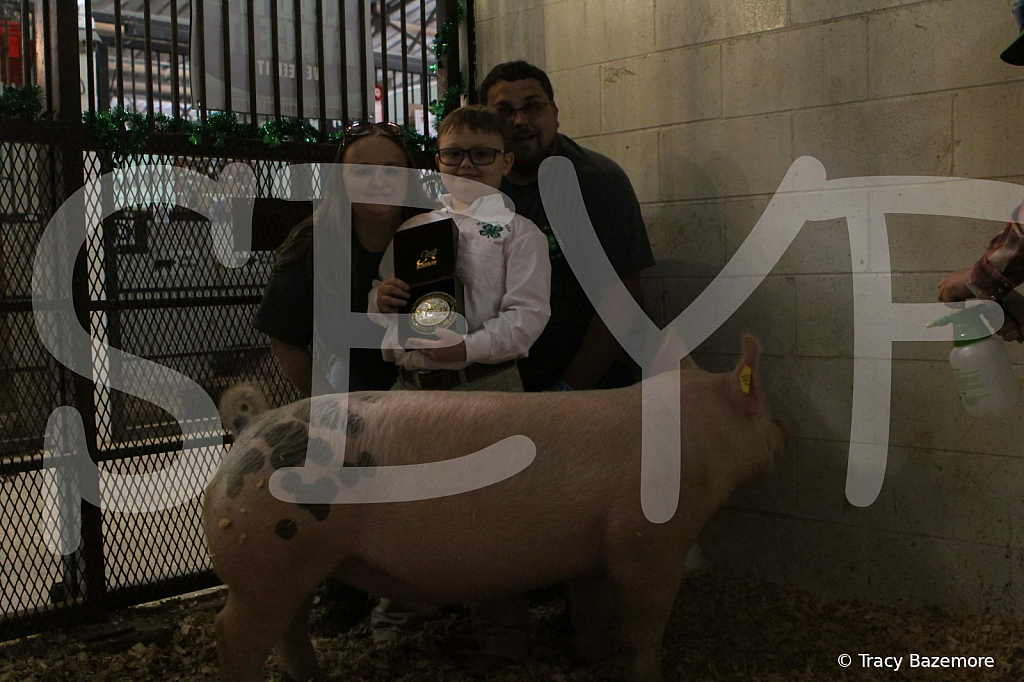swine4957