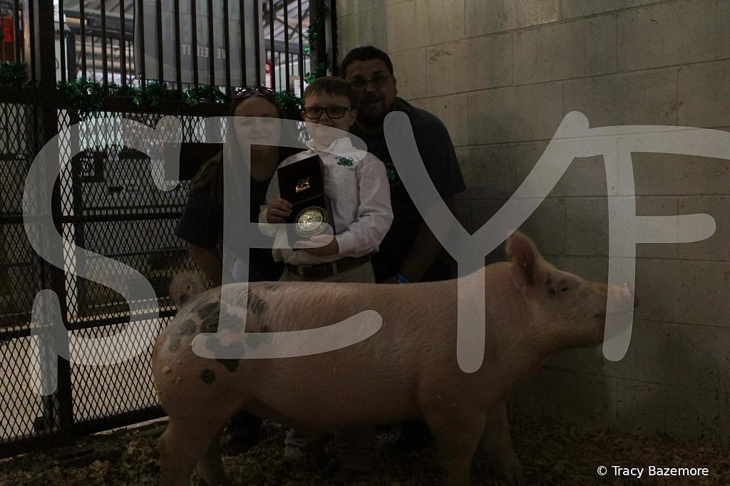 swine4959