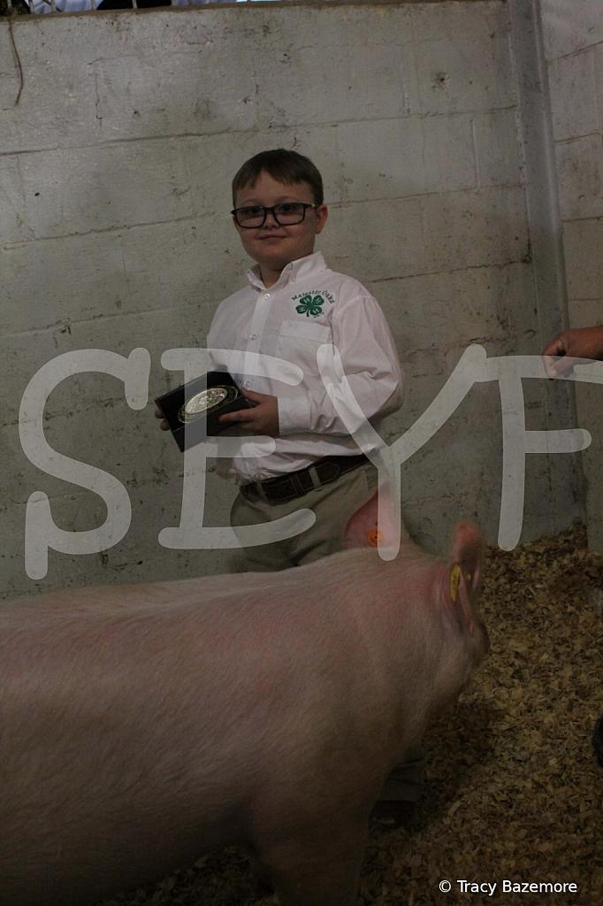 swine4944