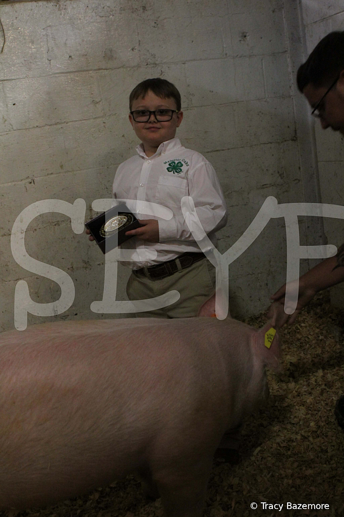 swine4945