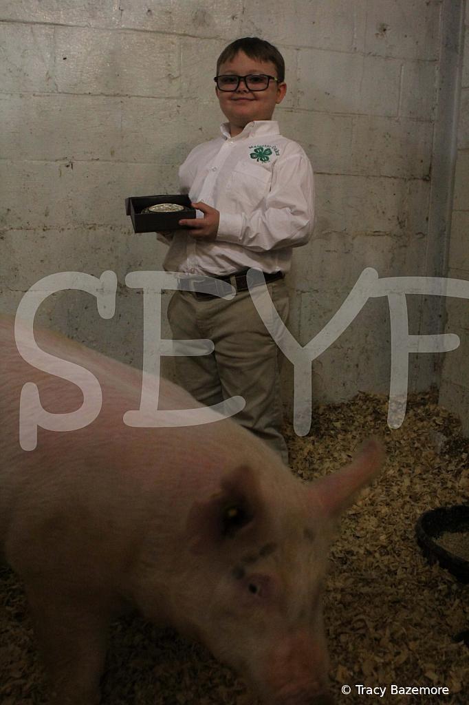 swine4947