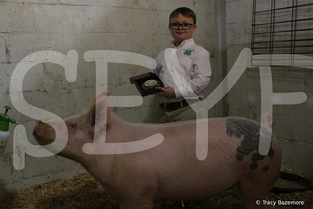 swine4948