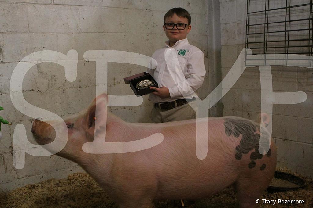 swine4949
