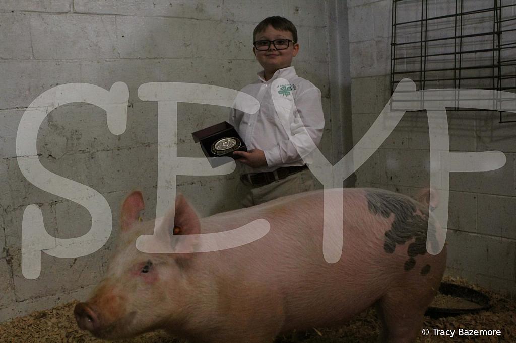 swine4950