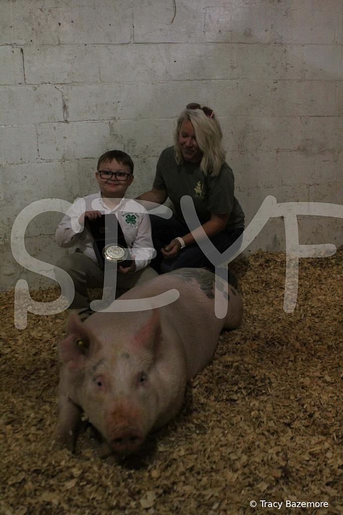 swine4951