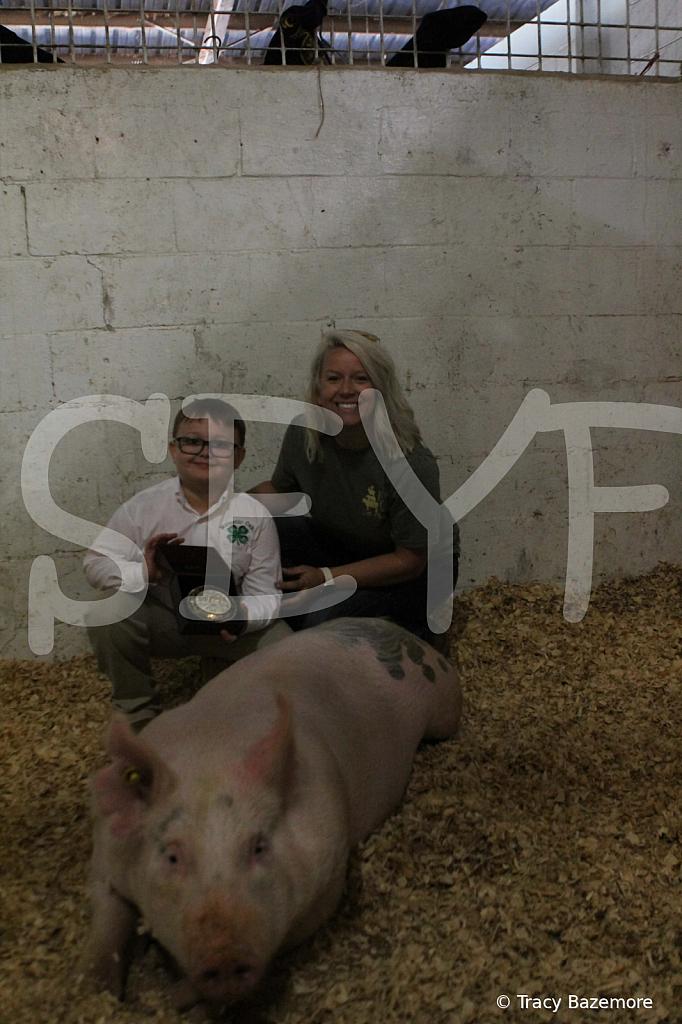 swine4952