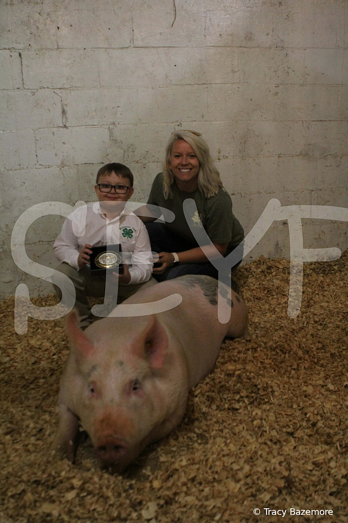 swine4953