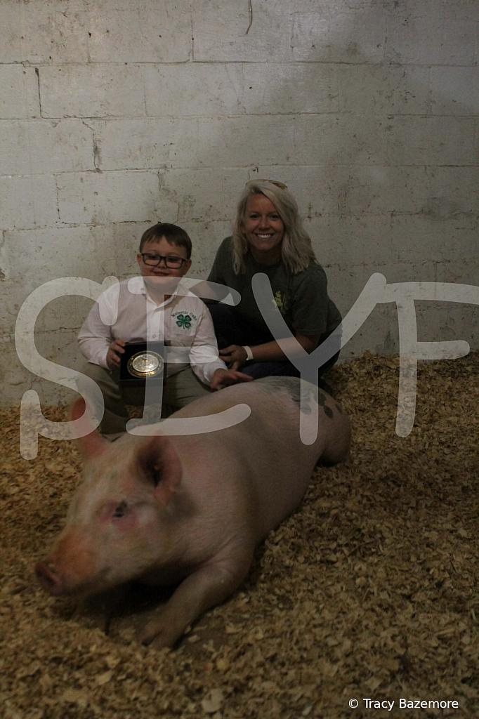 swine4956