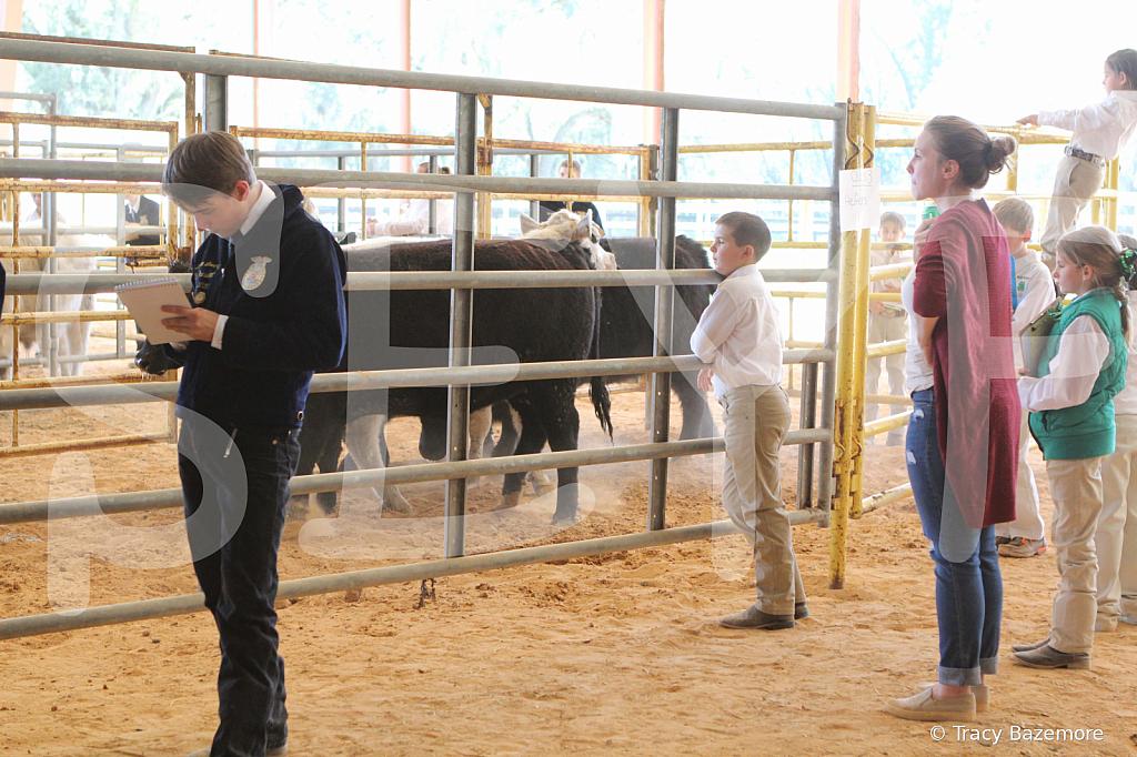 livestock2659
