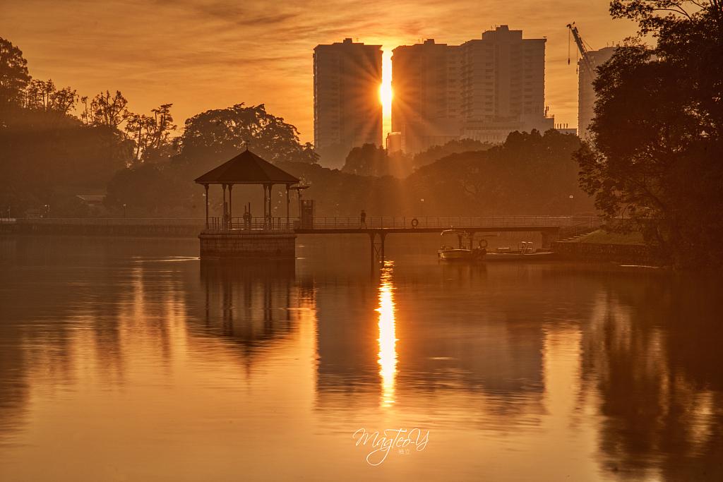 Sunrise @ MacRitchie Reservior, Singapore