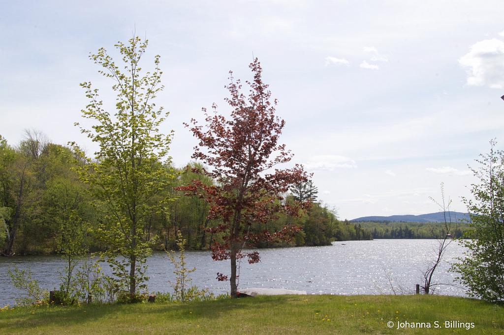 Monson Lake No Fence