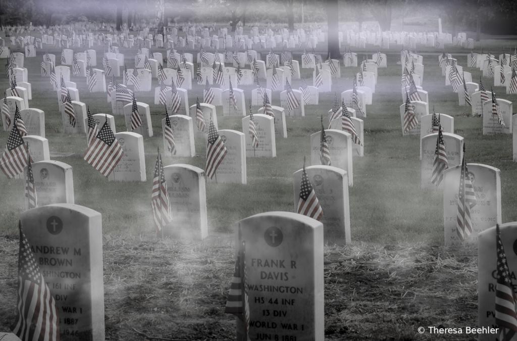 Chilly Morning - Veterans Day