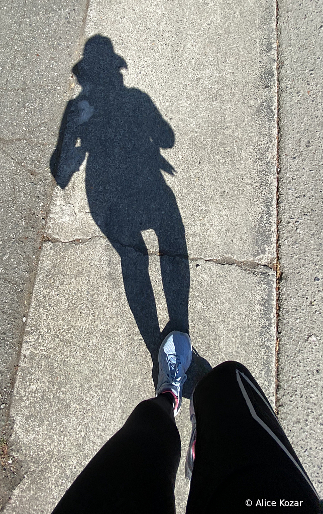 Me and My Shadow and iPhone XI