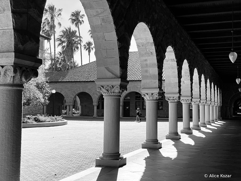 Stanford Collonade