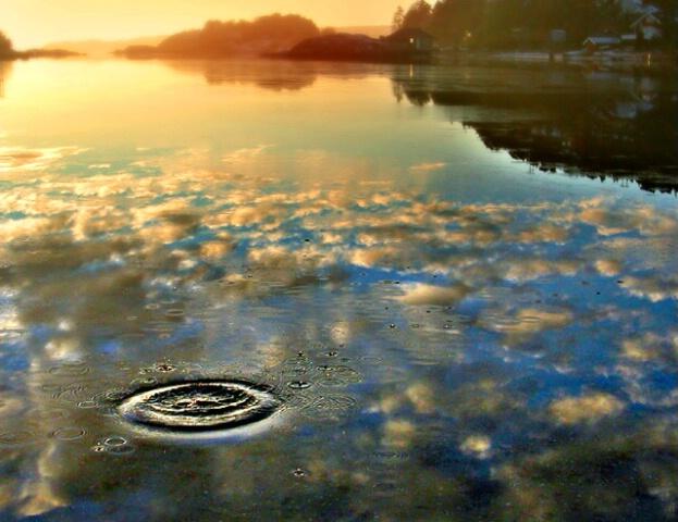Splash in Heaven