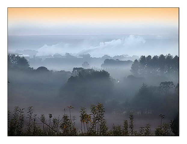 Fog`s Valley