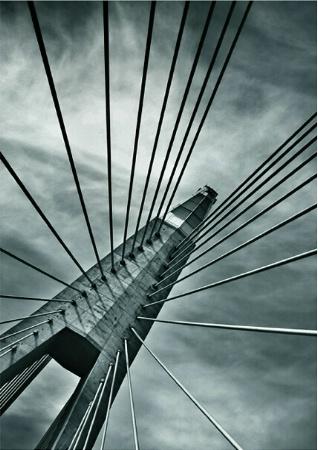 Caught by the bridge II