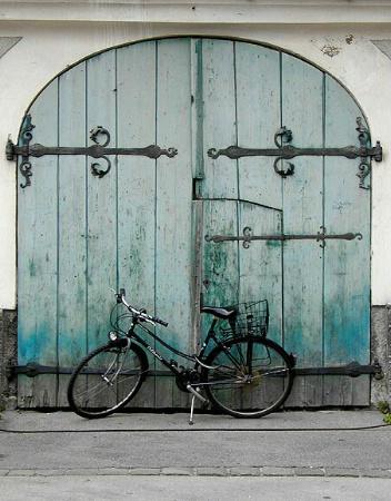 The guardian bike