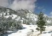 Gorgeous Winter D...