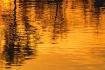 Sunset Reflection...
