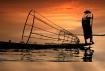 Burmese Fisherman
