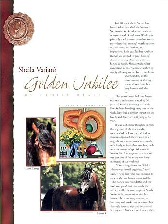 Varian Arabians  - ID: 782638 © Zita A. Strother