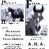 2Arabian Breeders - ID: 782667 © Zita A. Strother