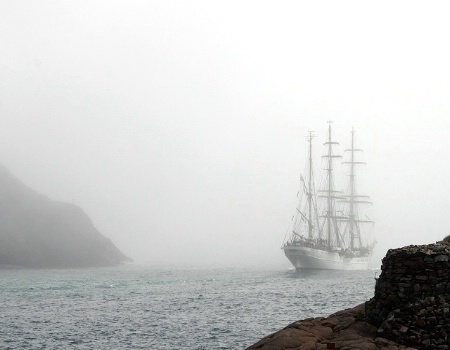 Leaving in the Fog