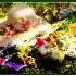 2Spring Bouquet - ID: 1985879 © William Greenan
