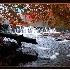 2Autumn Falls  - ID: 2870862 © William Greenan