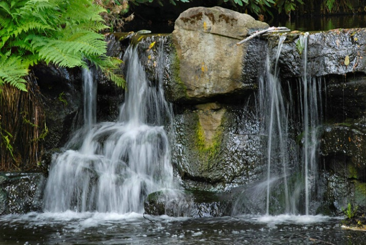 Cascade in the Park, Vancouver, BC - ID: 4179187 © Gerda Grice